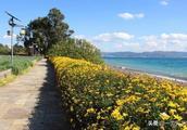 广龙小镇 保护抚仙湖岸的首个特色小镇