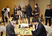 韩棋迷:申真谞敢不敢和柯洁比拼天赋灵光?