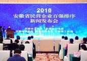 2018安徽省民营企业百强榜单发布!(附名单)