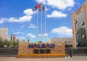 海利得,新材料制造业中股息率 5% 的分红股票