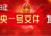 2019年中央一号文件全文发布(3)