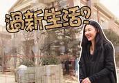 港媒曝张柏芝7000万豪宅准备装修,疑似将搬到北京住
