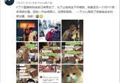 女孩为躲相亲,P图骗父母刘昊然是男友,点赞最高的评论心酸了!