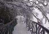 今日大雪,湖南这些地方的雪下成了哪一首诗?