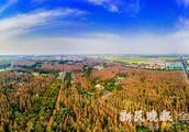 """长江口的""""绿色明珠""""——崇明区打造世界级生态岛"""