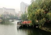 好消息!明年底株洲城区超九成黑臭水体要消除