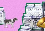 从消费者到生活者,日本妈妈们的社区改革之路