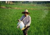 农村养老多少钱才够?国家政策指明方向