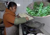 这种野菜遍地都是,桃子妈用它包饺子,清香四溢,小伙吃完嫌不够