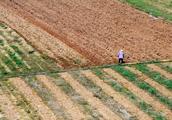 未来十年农村什么最值钱?