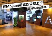 我的世界:五个人去Mojang微软面试,你猜谁会通过?