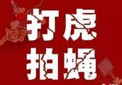 两副面孔!黔南这个县原常委、县委办主任被开除公职