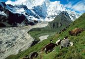西藏到底哪里吸引你?看看去过的人和没有去过的人怎么说