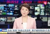 """上海开出租必须无犯罪记录!为当""""的哥""""男子竟伪造公文证件"""