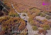 中国最长的高速,全长2540公里,造价370亿,横穿3大无人区
