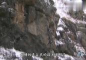 荒野求生:惊险!贝尔被困雪檐下,贝尔如何自救?
