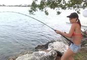 在美女不懈努力下,大鱼终于上钩了。