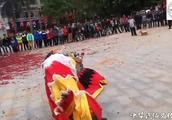 东莞黄江舞麒麟表演,这个和醒狮的动作不一样,有谁见过呢