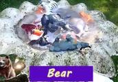 益智学习生物的名称和颜色:熊 河马