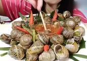 韩国妹子吃炒蜗牛,肉质鲜美可口,看着眼馋