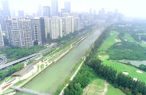 """深圳绿道行 大沙河生态长廊 """"水城人共融""""现诗意"""