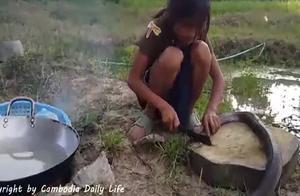 300块一斤的野生大蛇,小女孩把蛇头砍掉下锅煮,全程我汗毛竖起