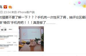 贾乃亮金晨否认恋情,称使用同款猫咪手机壳是公司买的