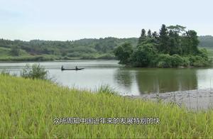 """如果三峡大坝遭到""""攻击"""",会有什么后果?网友:只要你敢来"""