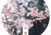 烟花三月下扬州 | 春风又绿江南岸,瘦西湖春季赏花指南出炉!
