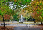 """哈尔滨迎最美""""落叶季"""" 城市公园赏秋叶完整版地图请收好"""