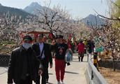 春季旅游迎首个高峰!清明三天烟台13家景区接待游客超19万人次