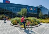 硅谷996真相调查:谷歌员工要7*24待命 自愿加班给够钱