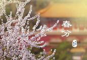 燕子来时,陌上花开,今天春分,关于春分的习俗你了解吗?