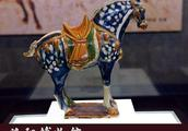 走进洛阳博物馆的那些国家宝藏珍品文物(4)唐三彩蓝釉白斑马