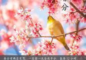 """燕子来时,陌上花开!今日春分,你""""立春蛋""""了吗?"""