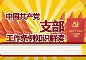 动漫版这样讲解《中国共产党支部工作条例(试行)》