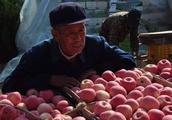 收购价只要三毛,到了城里卖五块一斤,可农民还是把果树都砍了